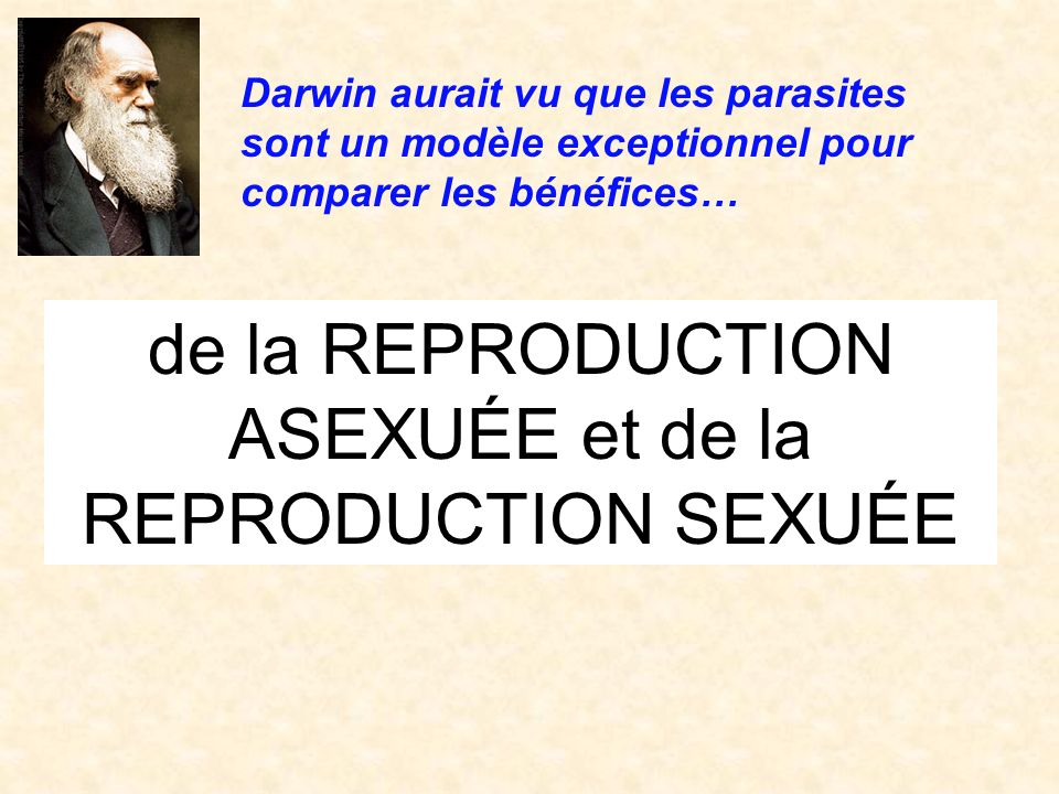 de la REPRODUCTION ASEXUÉE et de la