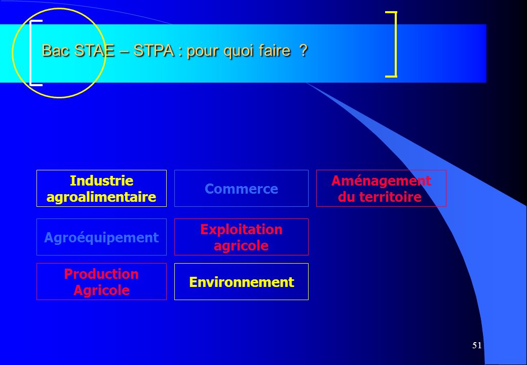 Bac STAE – STPA : pour quoi faire