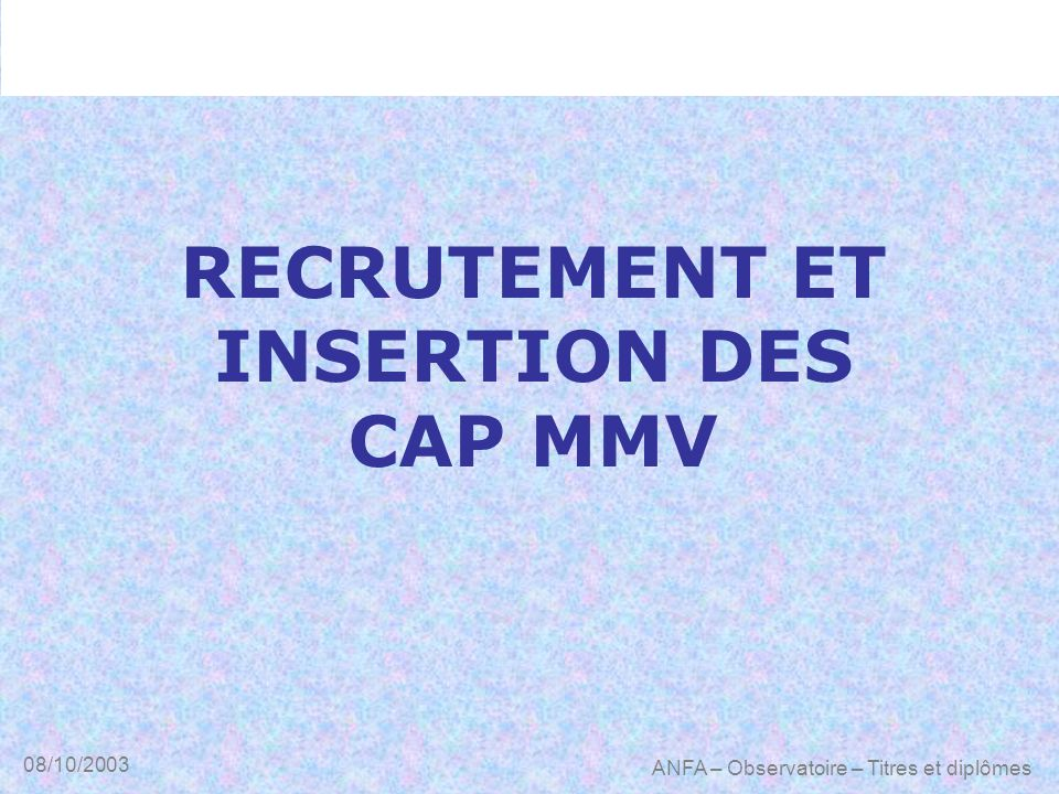 RECRUTEMENT ET INSERTION DES CAP MMV
