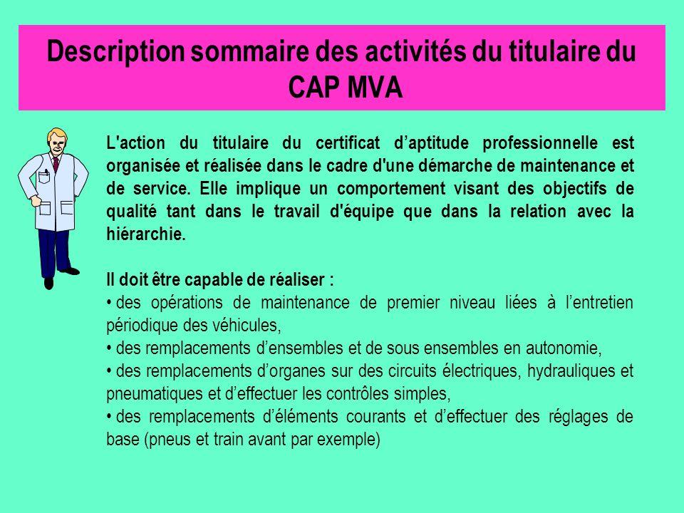 Description sommaire des activités du titulaire du CAP MVA
