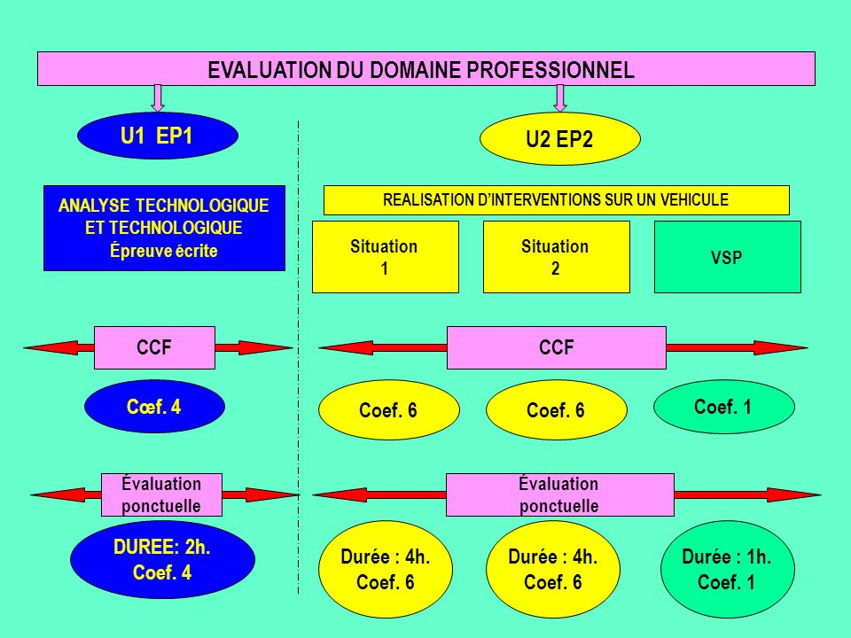 EVALUATION DU DOMAINE PROFESSIONNEL ANALYSE TECHNOLOGIQUE
