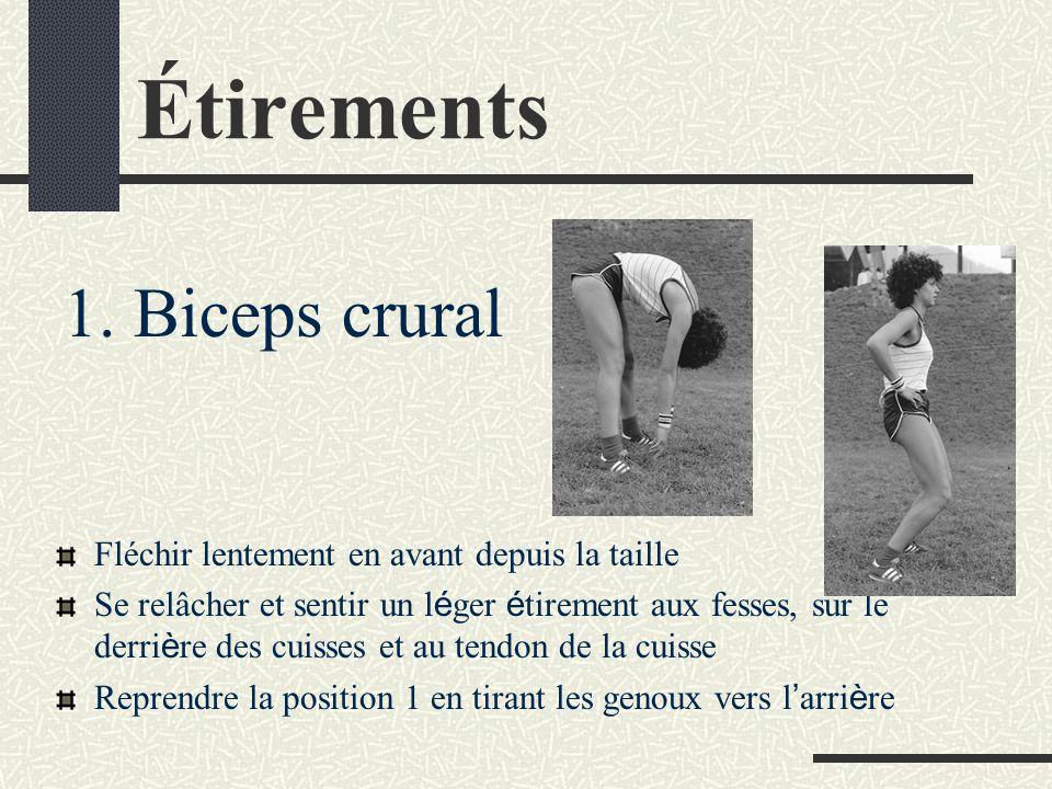 Étirements 1. Biceps crural