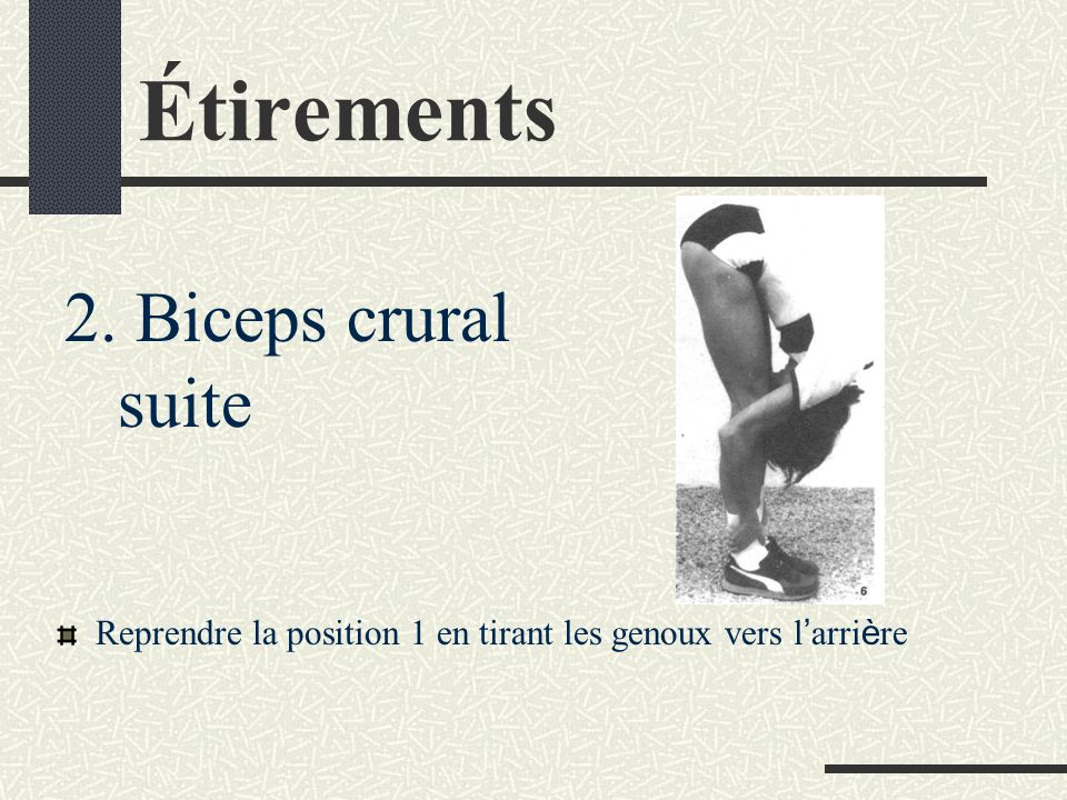 Étirements 2. Biceps crural suite