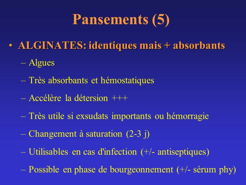 Pansements (5) ALGINATES: identiques mais + absorbants Algues