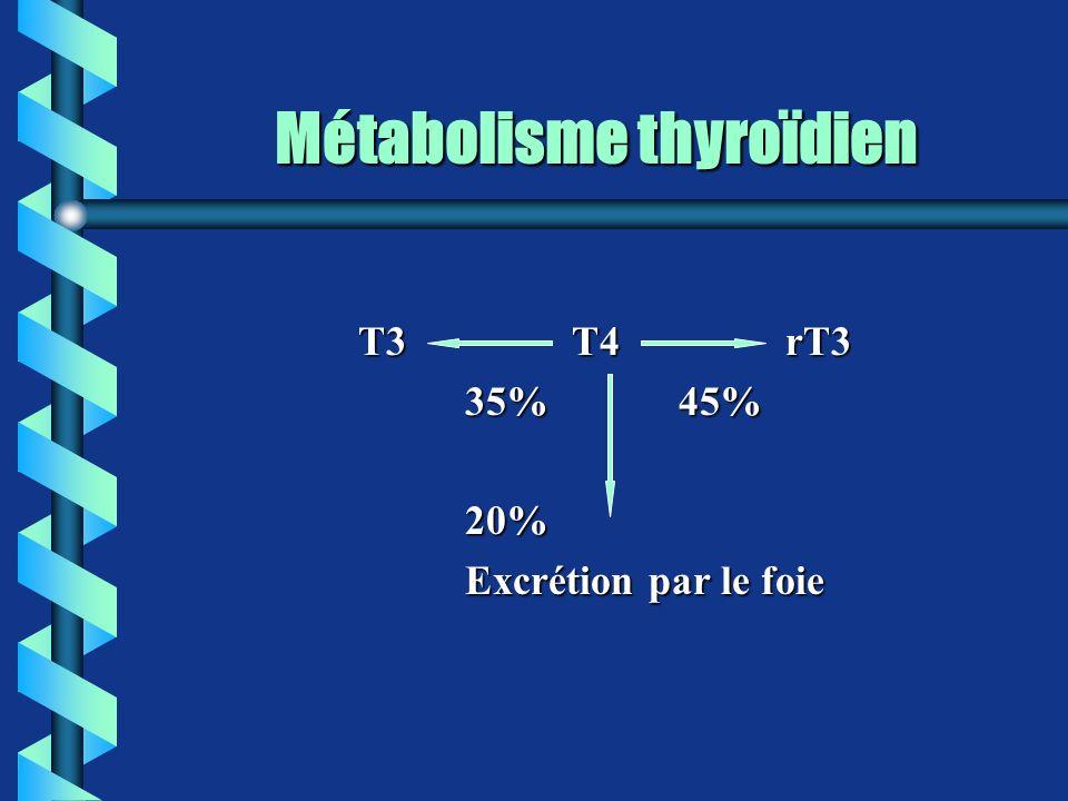 Métabolisme thyroïdien