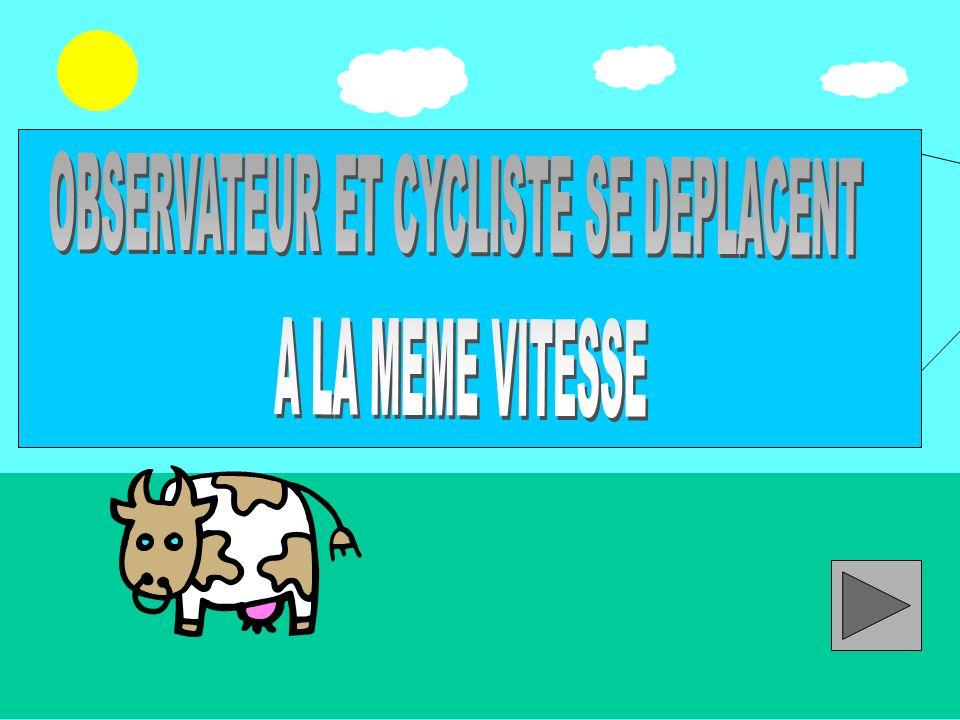 OBSERVATEUR ET CYCLISTE SE DEPLACENT
