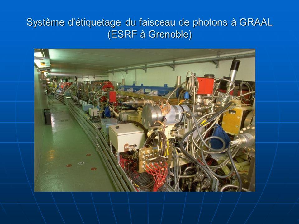 Système d'étiquetage du faisceau de photons à GRAAL (ESRF à Grenoble)