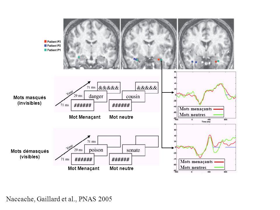 Naccache, Gaillard et al., PNAS 2005