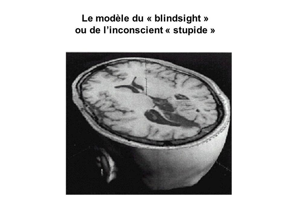 Le modèle du « blindsight » ou de l'inconscient « stupide »