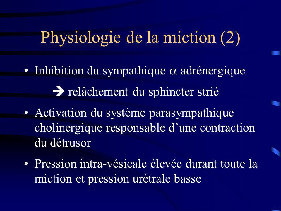 Physiologie de la miction (2)