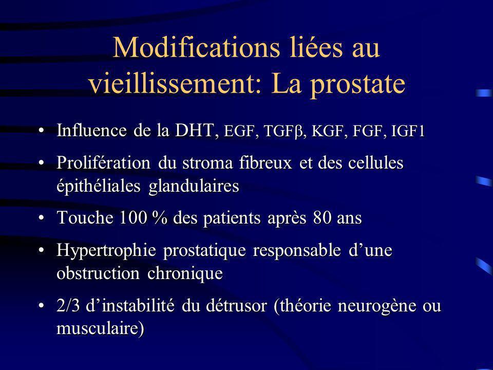 Modifications liées au vieillissement: La prostate
