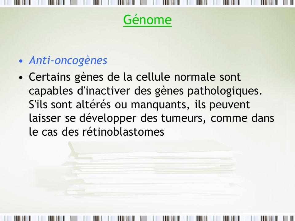 Génome Anti-oncogènes