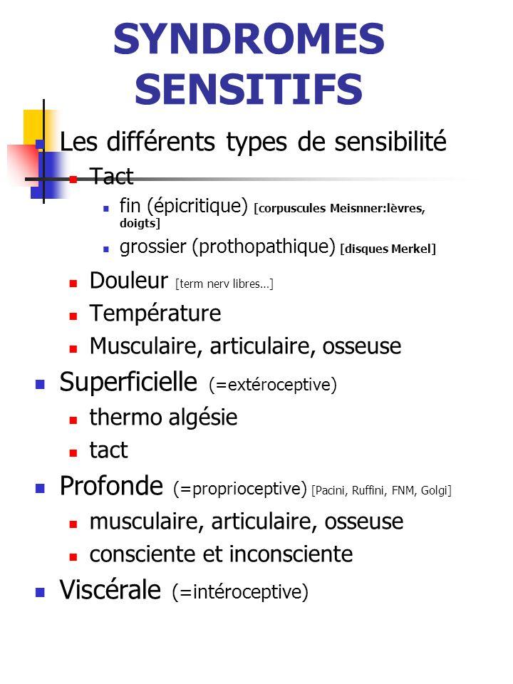 SYNDROMES SENSITIFS Les différents types de sensibilité