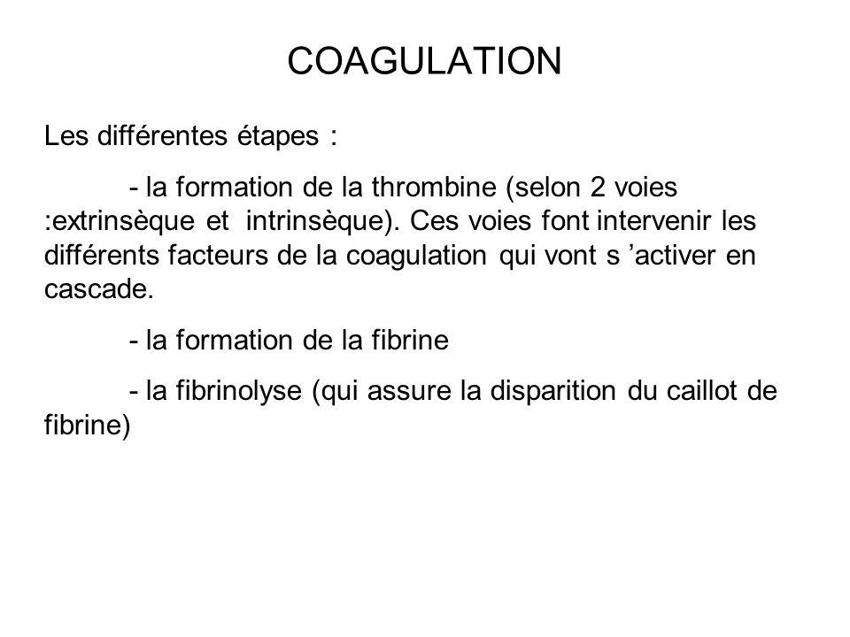 COAGULATION Les différentes étapes :