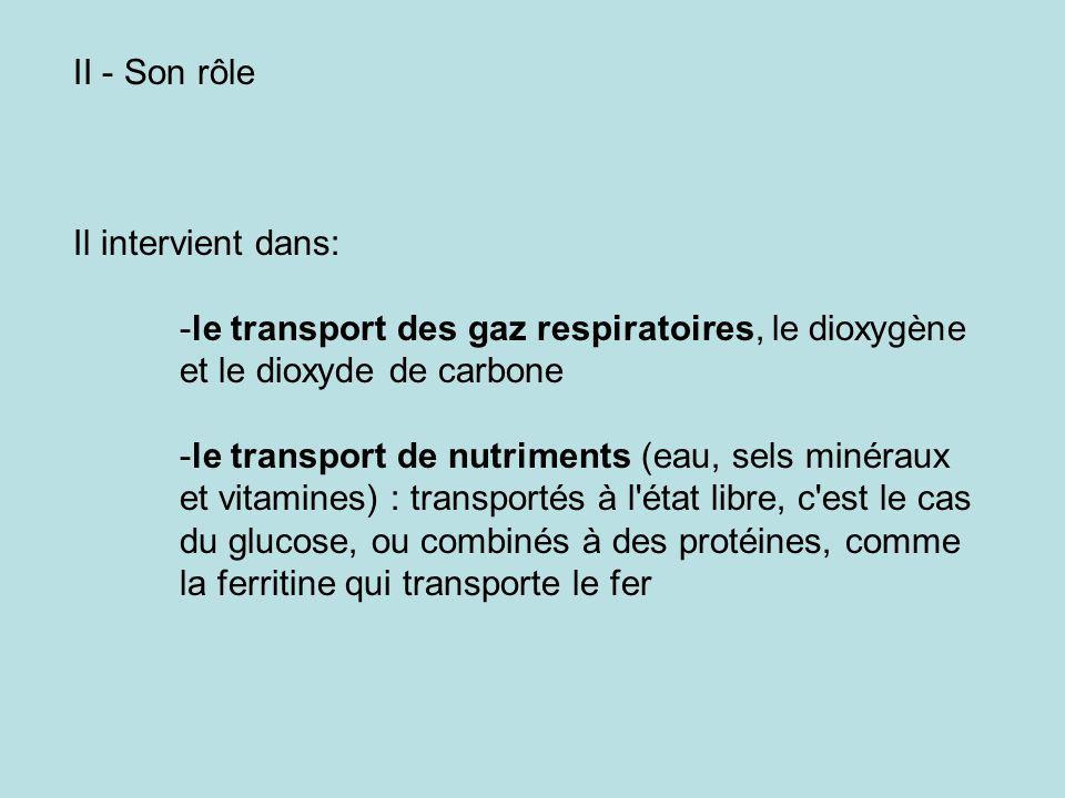 II - Son rôle Il intervient dans: le transport des gaz respiratoires, le dioxygène et le dioxyde de carbone.