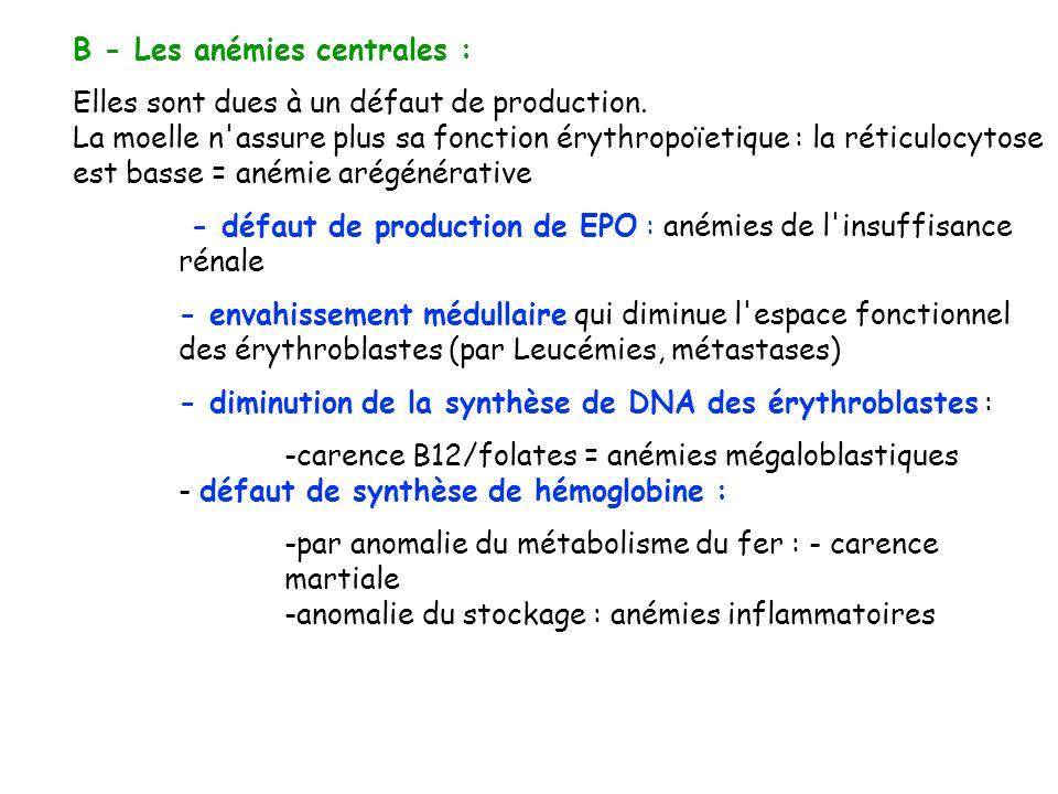 B - Les anémies centrales :