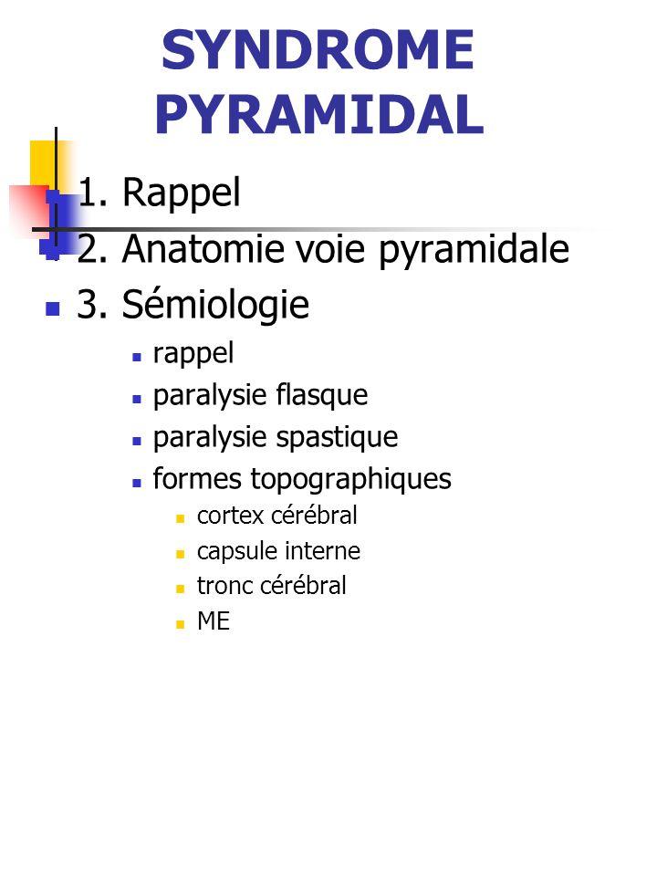 SYNDROME PYRAMIDAL 1. Rappel 2. Anatomie voie pyramidale 3. Sémiologie