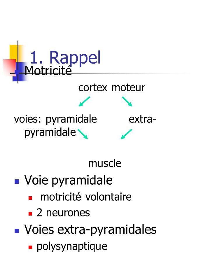 1. Rappel Motricité Voie pyramidale Voies extra-pyramidales