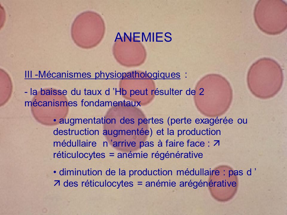 ANEMIES III -Mécanismes physiopathologiques :