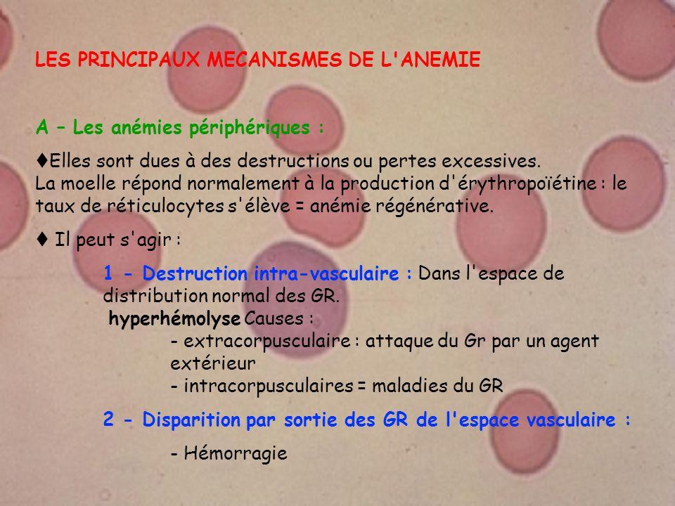 LES PRINCIPAUX MECANISMES DE L ANEMIE