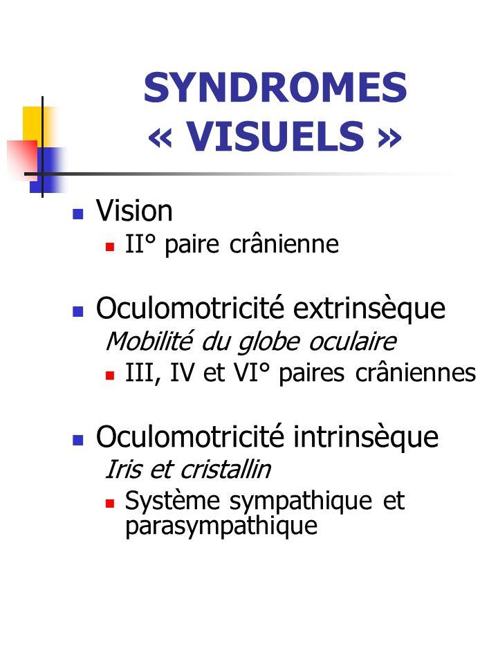 SYNDROMES « VISUELS » Vision Oculomotricité extrinsèque