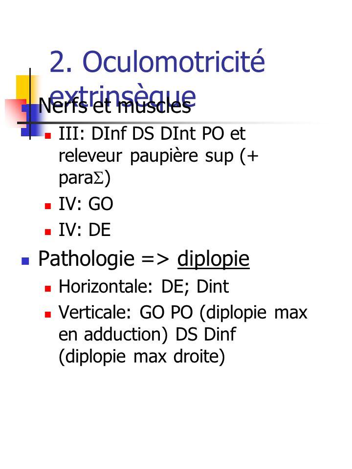 2. Oculomotricité extrinsèque