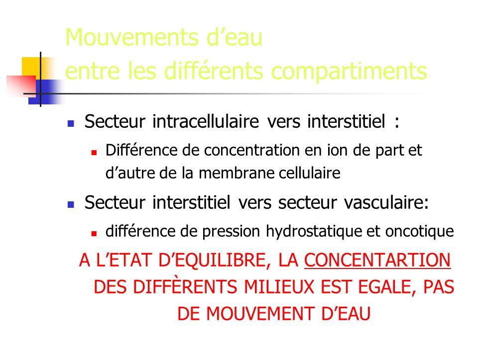 Mouvements d'eau entre les différents compartiments