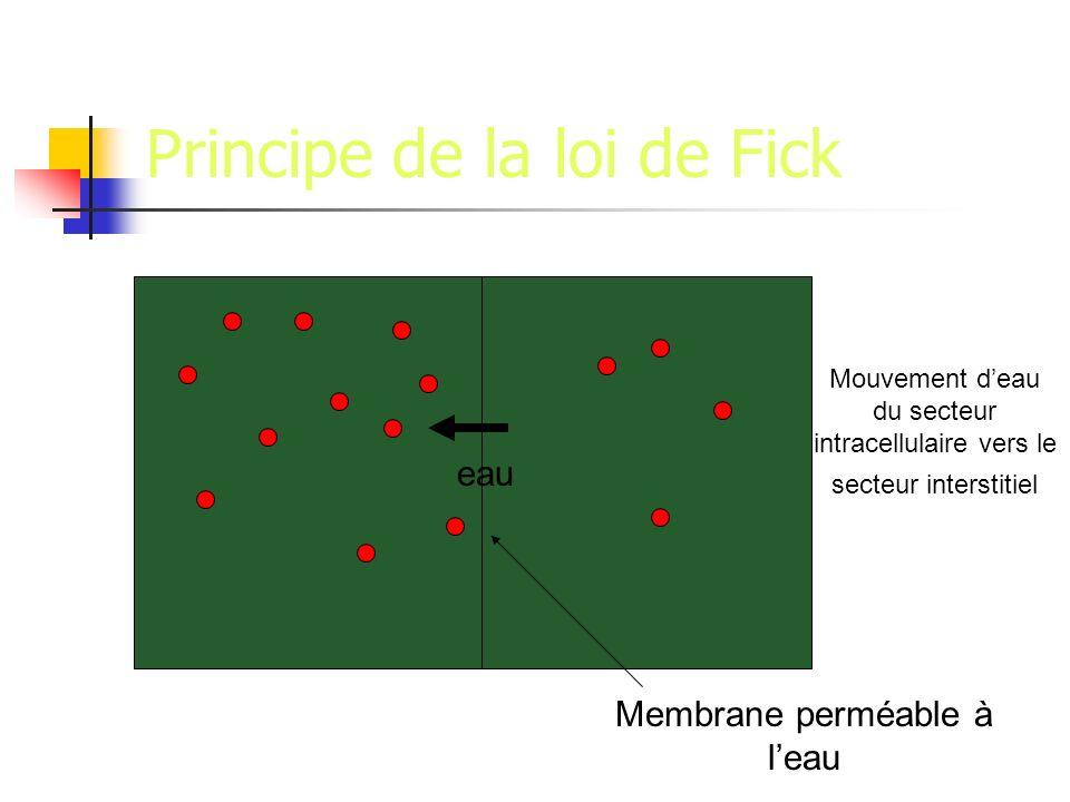 Principe de la loi de Fick