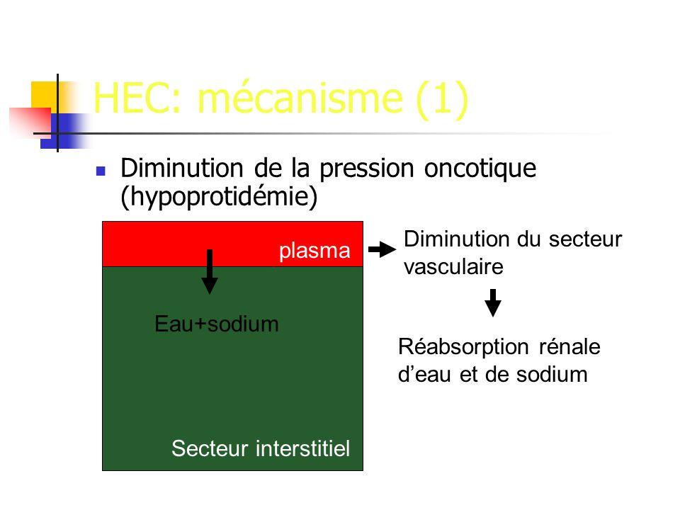 HEC: mécanisme (1) Diminution de la pression oncotique (hypoprotidémie) Diminution du secteur vasculaire.