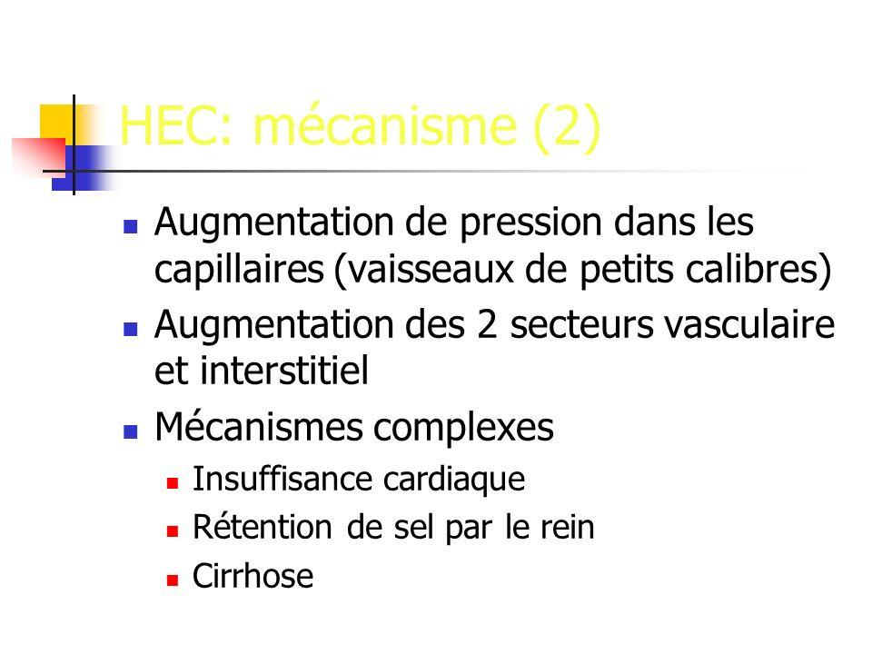 HEC: mécanisme (2) Augmentation de pression dans les capillaires (vaisseaux de petits calibres)
