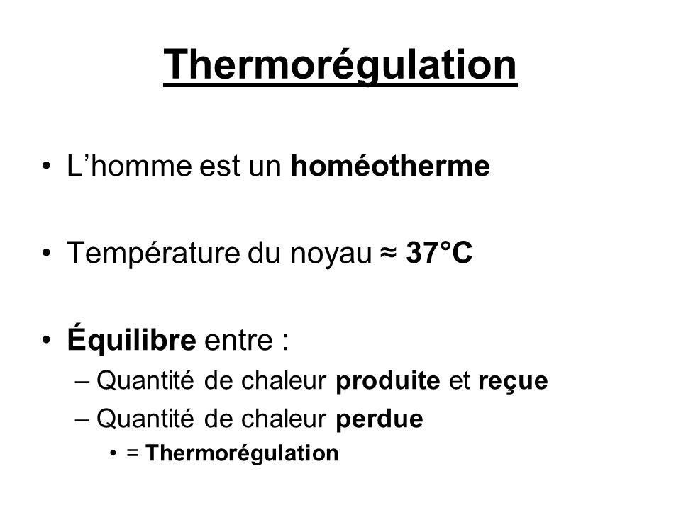 Thermorégulation L'homme est un homéotherme