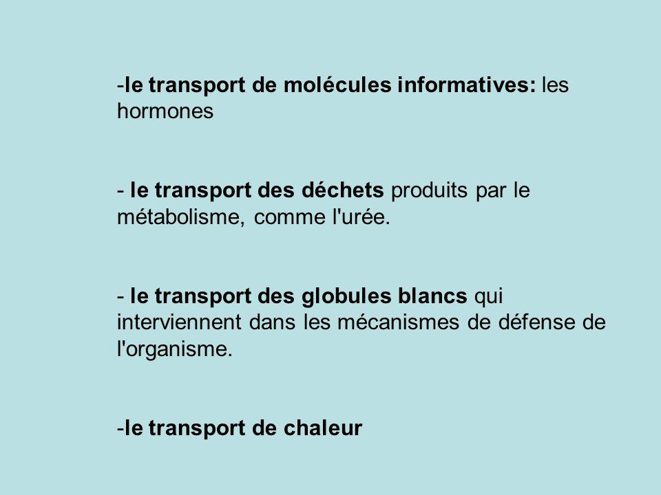 le transport de molécules informatives: les hormones