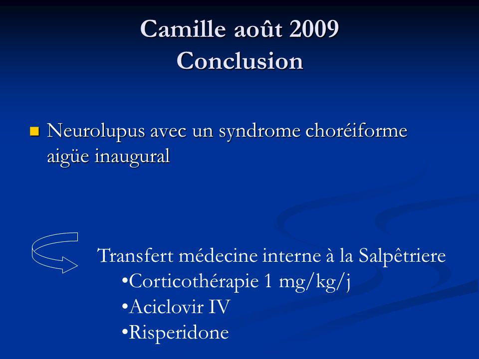 Camille août 2009 Conclusion