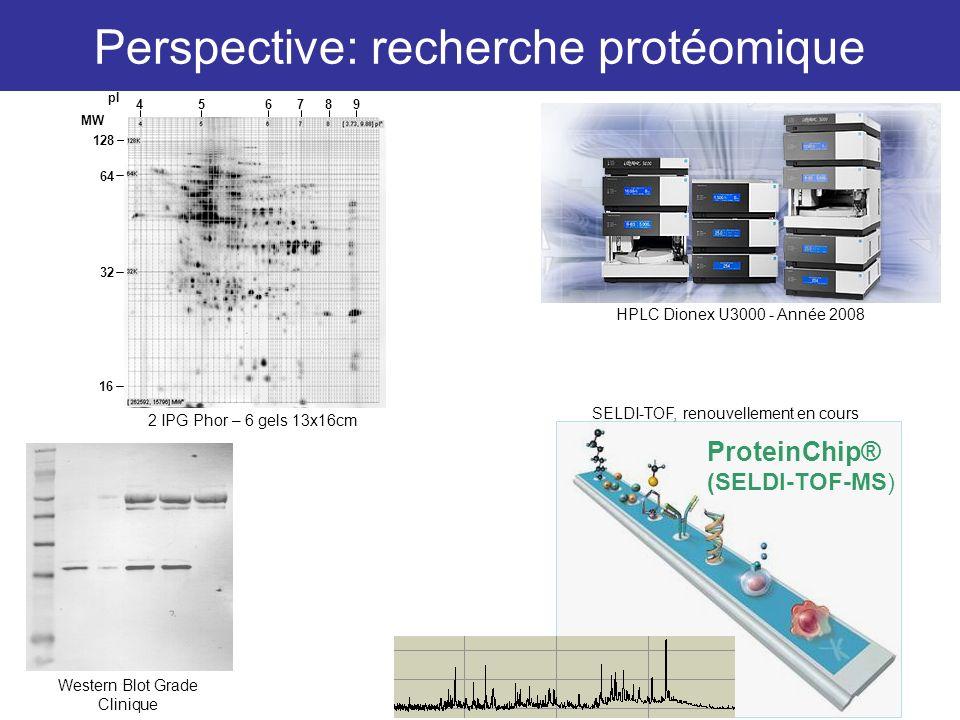 Perspective: recherche protéomique