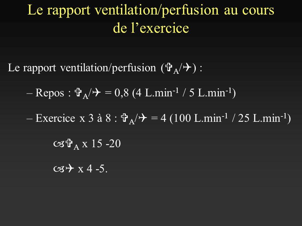 Le rapport ventilation/perfusion au cours de l'exercice