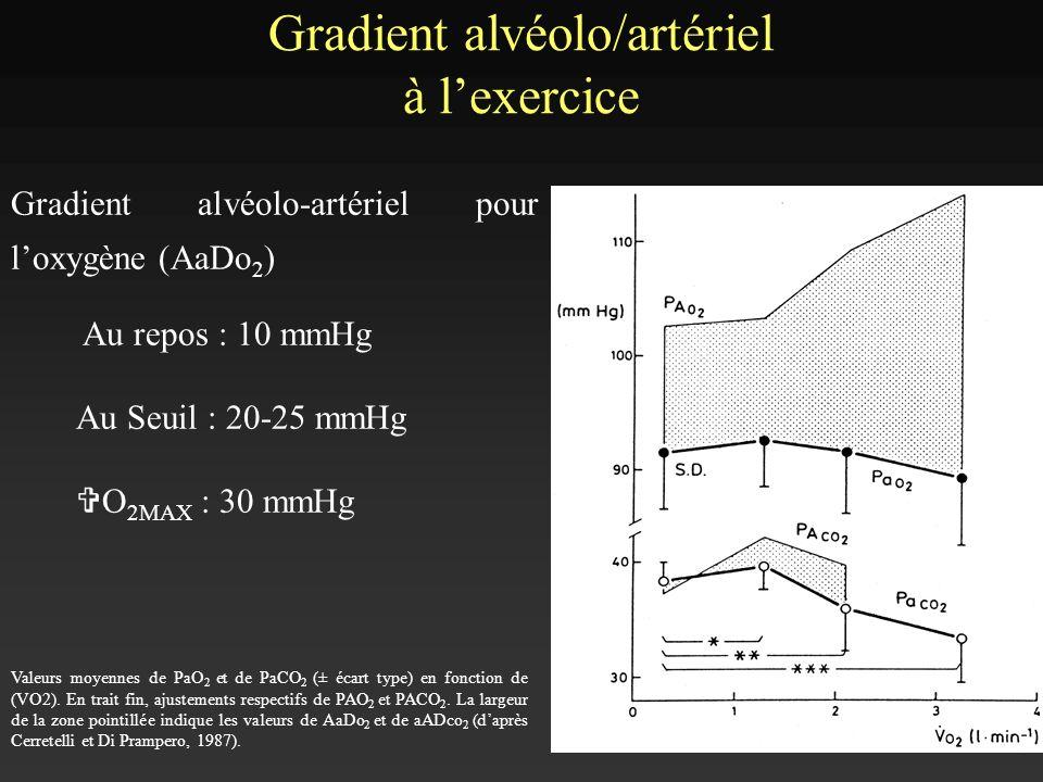 Gradient alvéolo/artériel à l'exercice