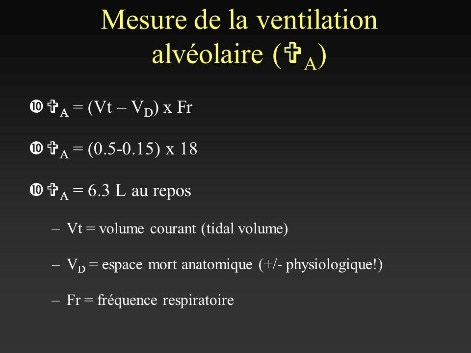 Mesure de la ventilation alvéolaire (VA)