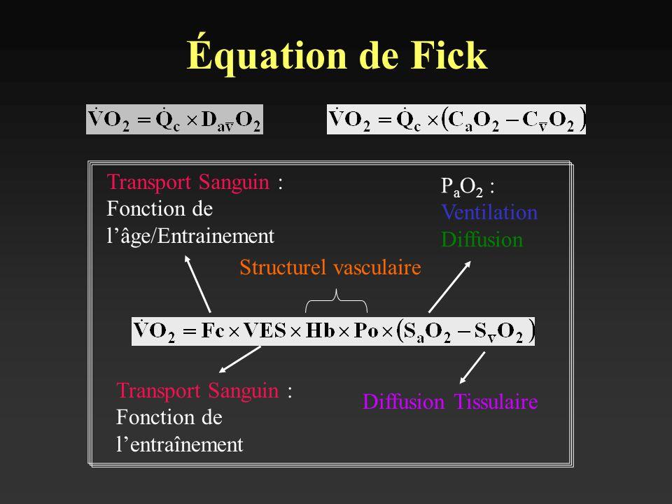 Équation de Fick Transport Sanguin : Fonction de l'âge/Entrainement
