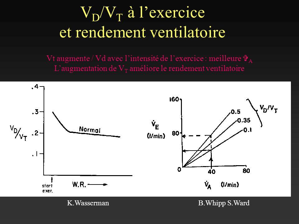 VD/VT à l'exercice et rendement ventilatoire