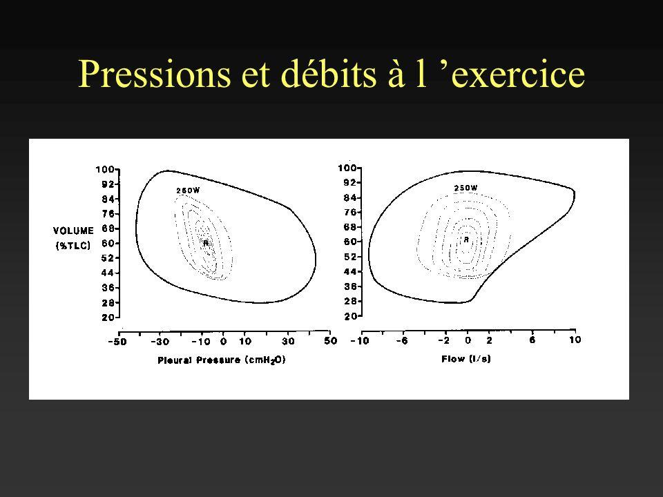 Pressions et débits à l 'exercice