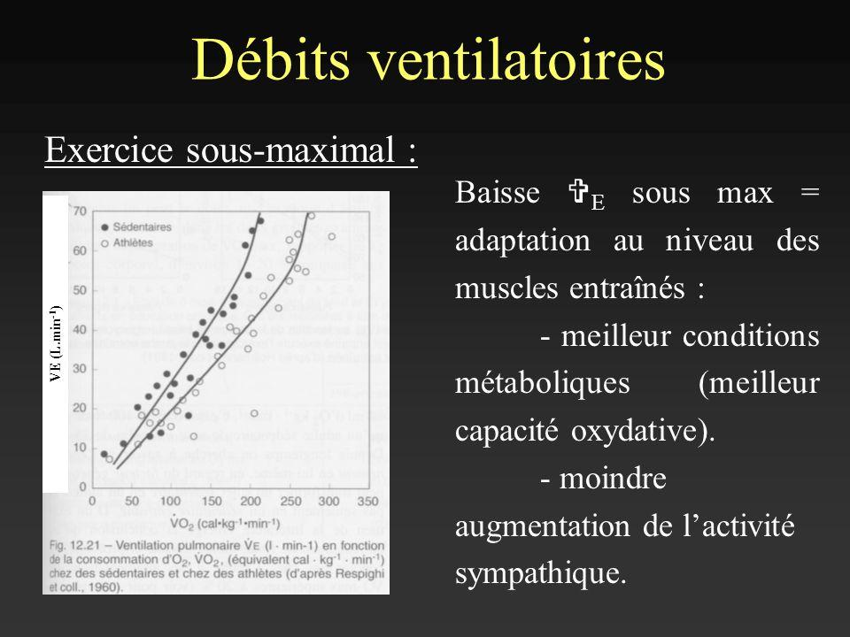 Débits ventilatoires Exercice sous-maximal :