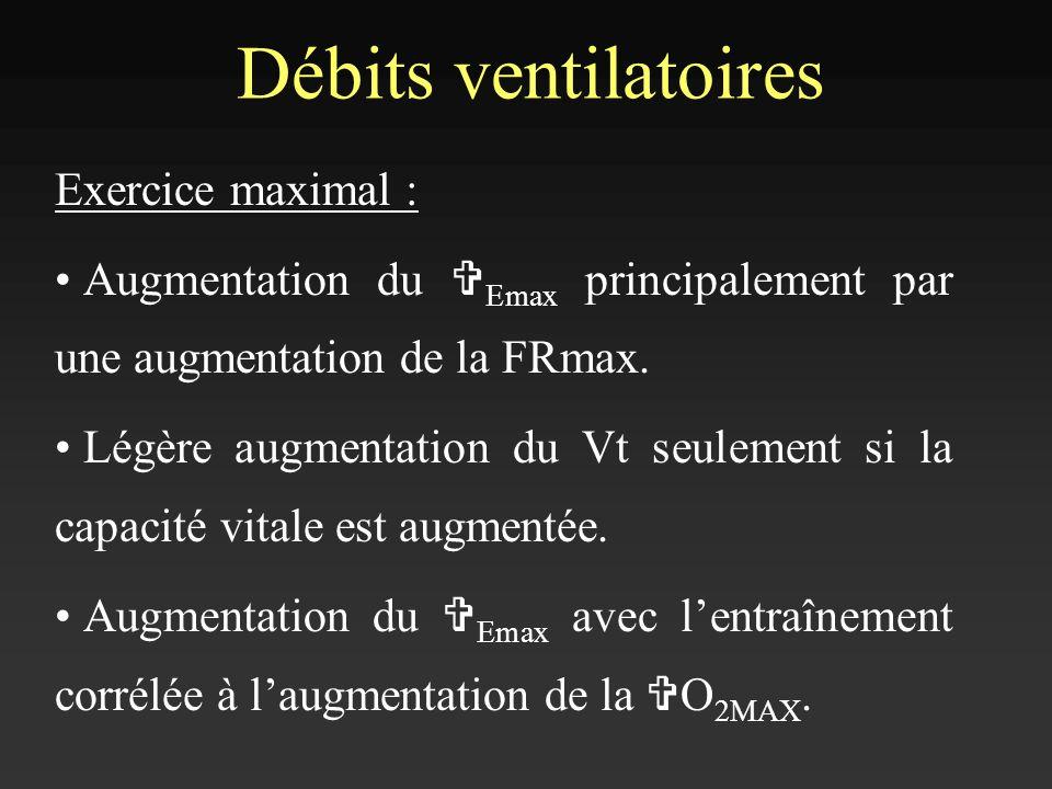 Débits ventilatoires Exercice maximal :