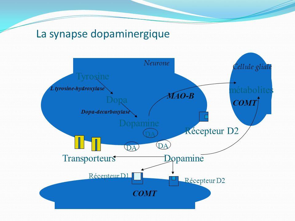 La synapse dopaminergique