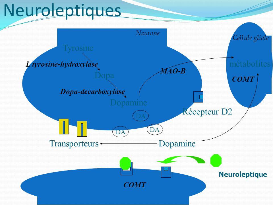 L tyrosine-hydroxylase