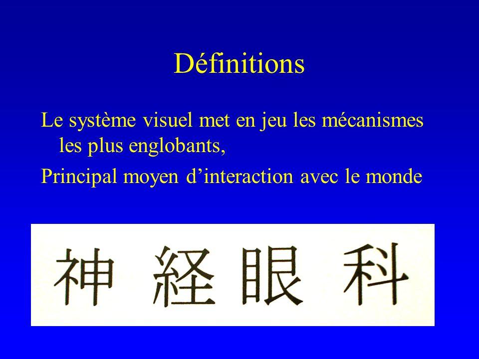 Définitions Le système visuel met en jeu les mécanismes les plus englobants, Principal moyen d'interaction avec le monde.