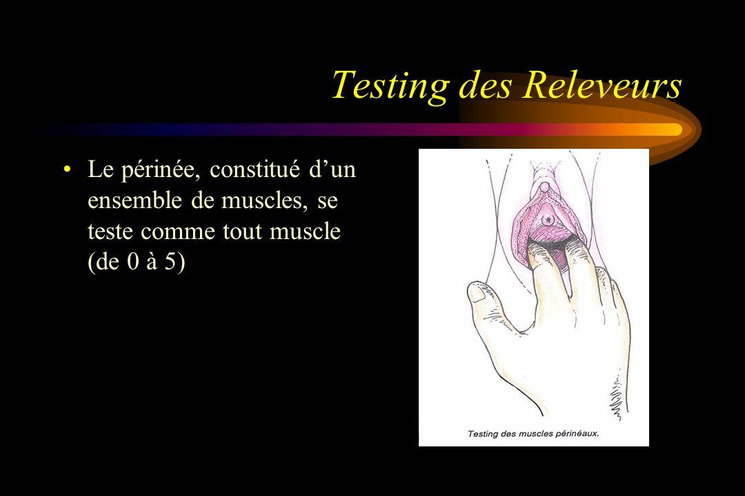 Testing des Releveurs Le périnée, constitué d'un ensemble de muscles, se teste comme tout muscle (de 0 à 5)