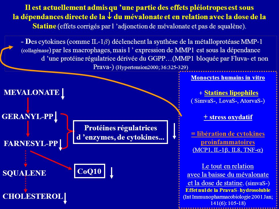 de la NO-Synthase dépend d 'une protéine régulatrice issue du GGPP…