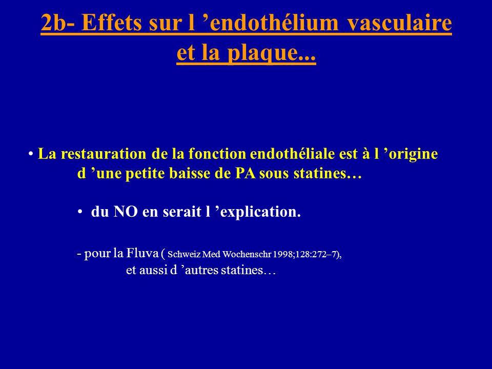 2b- Effets sur l 'endothélium vasculaire