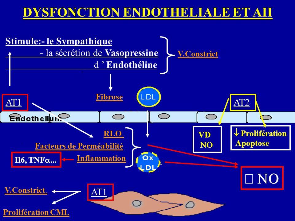 DYSFONCTION ENDOTHELIALE ET AII