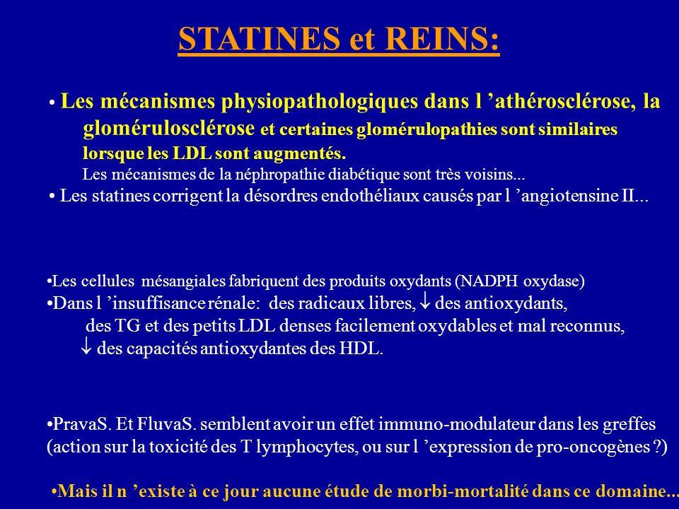 STATINES et REINS: Les mécanismes physiopathologiques dans l 'athérosclérose, la glomérulosclérose et certaines glomérulopathies sont similaires.
